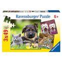 Puz.3 x 49 perros y gatos - 26909423