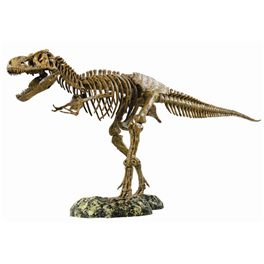 Tiranosaurus rex animal planet