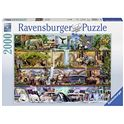 Puzzle 2000 mundo animal - 26916652