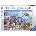 Puzzle 2000 arrecife de coral - 26916704
