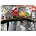 Puzzle 500 pájaros en la jungla - 04017984