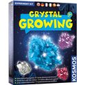 Crystal growing - 04666526