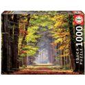 Puzzle 1000 paseo otoñal - 04019021